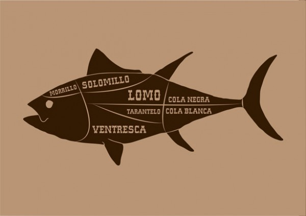 dibujod e despiece de un atún, ilutracion de galmir
