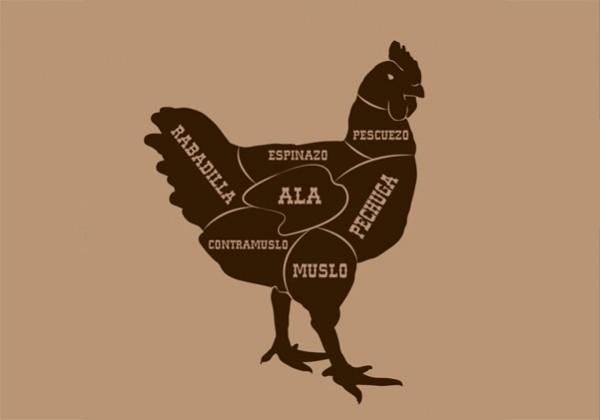 ilustración de despiece de pollo  por galmir