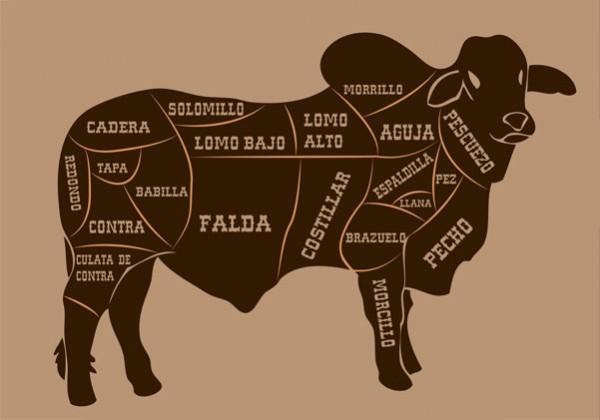 ilusracion de despiece de vaca por galmir